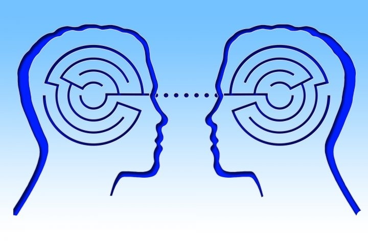Neuroanatomía de la comunicación